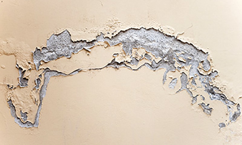 Wall Seepage and Leakage Service in Hyderabad